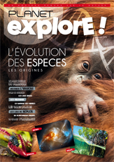 L'EVOLUTION DES ESPECES Les origines